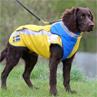 Trampet skyddsväst för hund