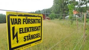 Rovdjursstängsel förändrar landskapet.
