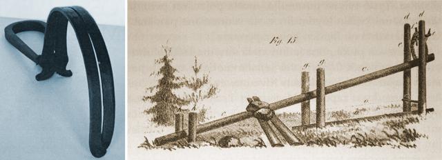 Vargfällor från 1800-talet.