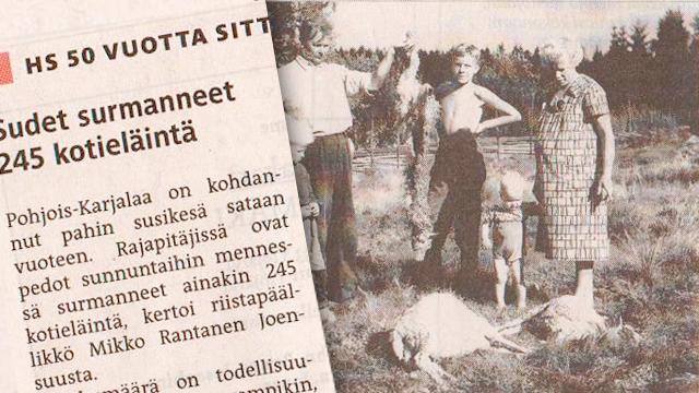 HS: 245 husdjur dödade sommaren 1961