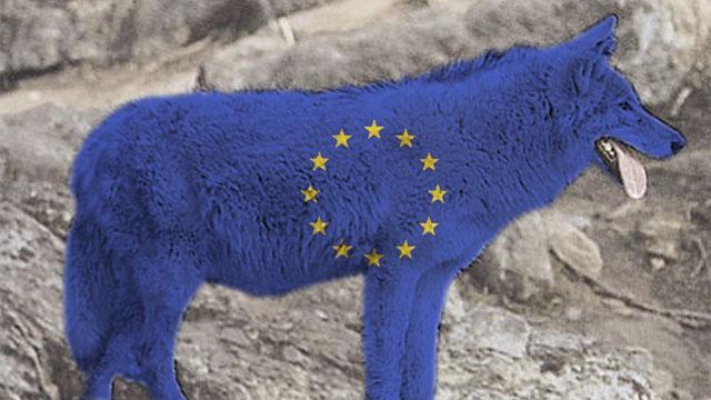 EU-varg