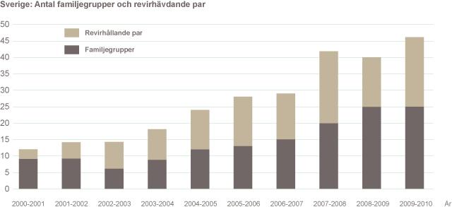 Familjegrupper och revirmarkerande par i Sverige 2010.