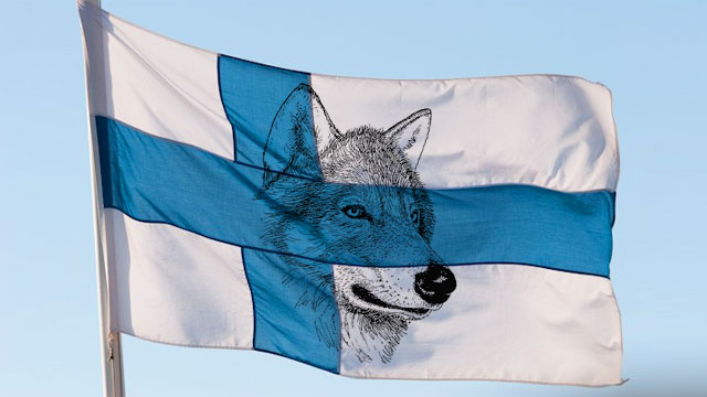 Finlands flagga med varg.