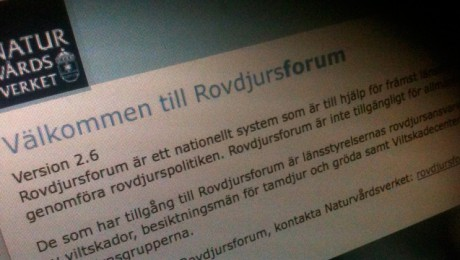 rovdjursforum_640px