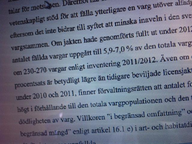 Förvaltningsrätten fel ute om antal vargar