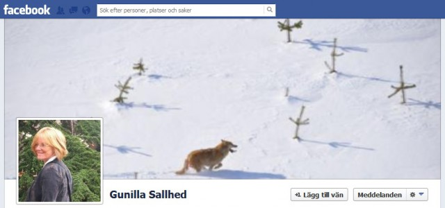 gunilla sallhed facebook sida