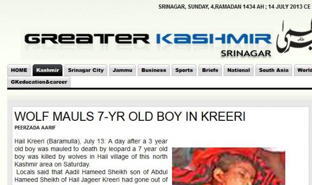 7-åring dödad av varg kashmir