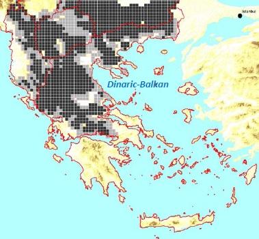 2000 hästar mulor och åsnor dödade av varg grekland