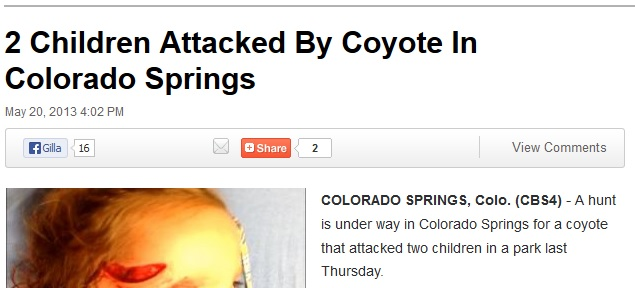 två barn angripna av prärievarg