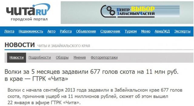 677 kor vargdödade på 5 månader