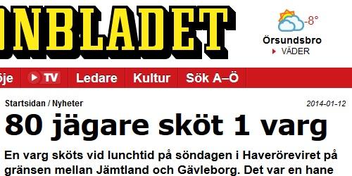 Osakligt om vargjakt från Aftonbladet