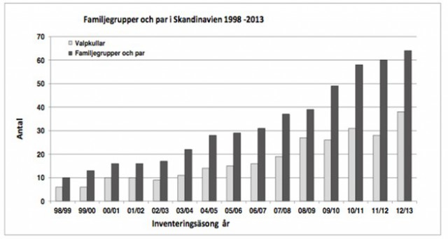 Vargstammens utveckling -2013