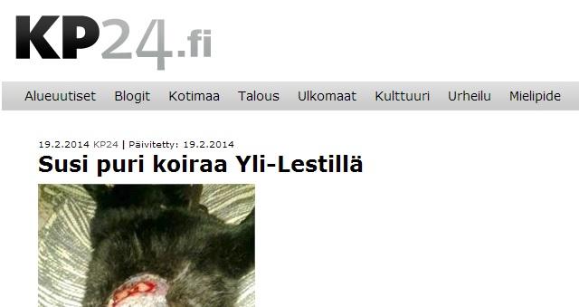 hund angripen i hundgård finland