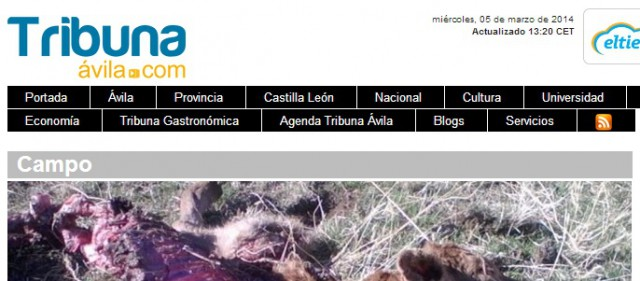 nya vargangrepp i riofrio spanien