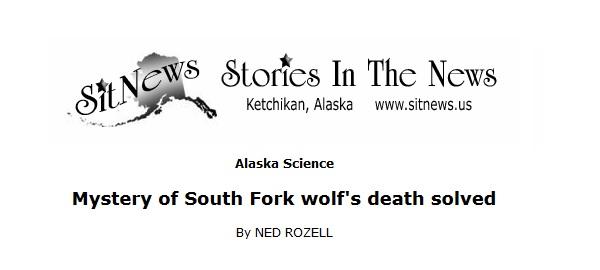 vargar vanlig dödsorsak bland vargar