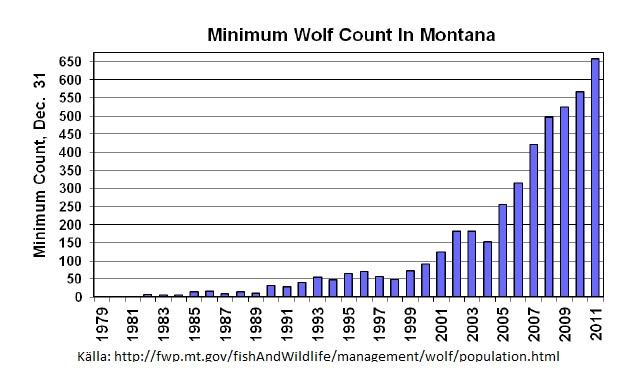 markägare får tillåtelse att skjuta upp till 100 vargar