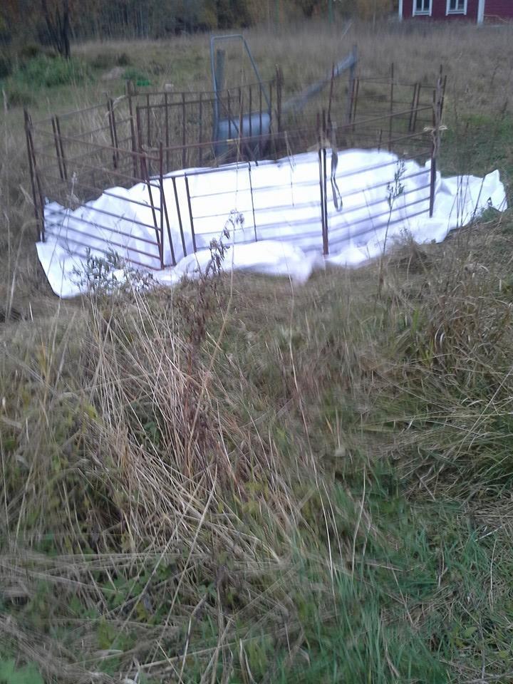 fårbesättning utplånad efter vargangrepp