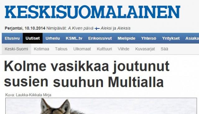 tre kalvar vargdödade finland
