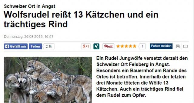 13 katter och en ko vargdödade