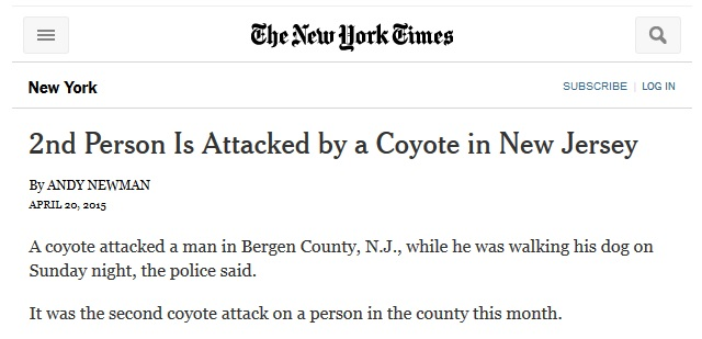 prärievarg bakom två angrep utanför new york